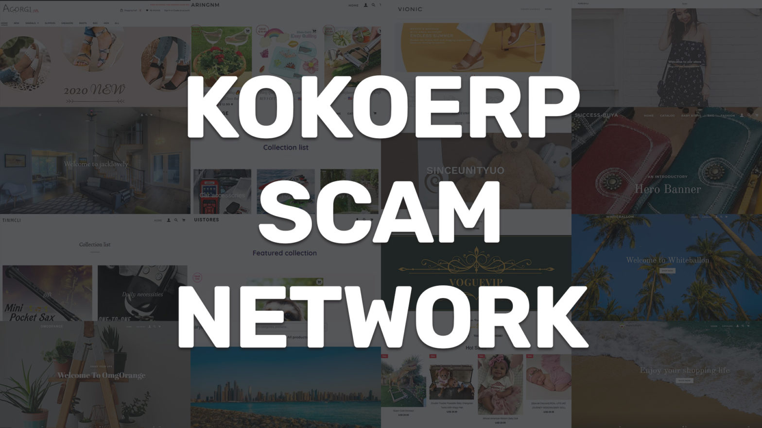 kokoerp scam network collage