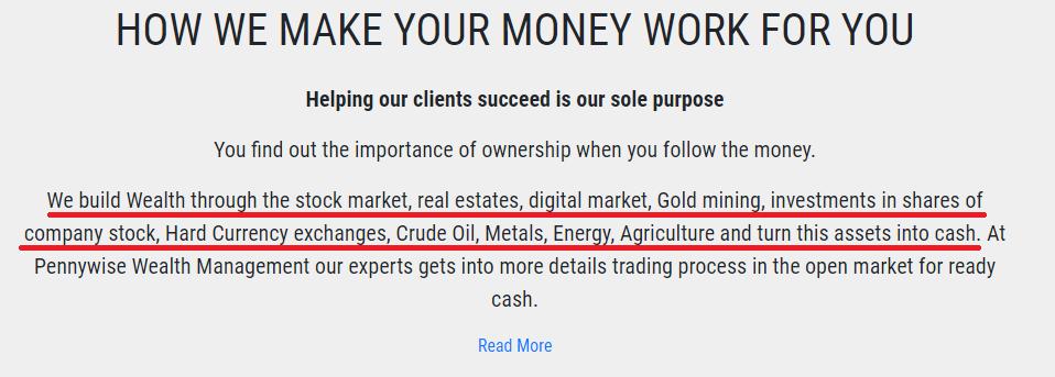 pennywise wealth management scam portfolio