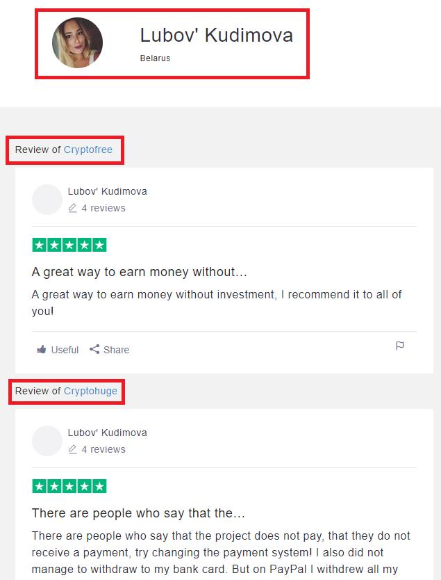 fake review 1-1