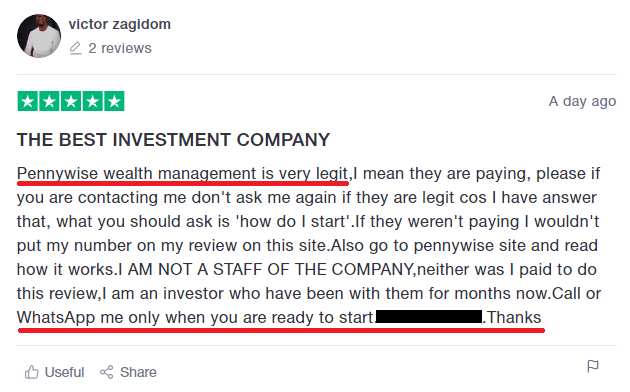 pennywise wealth management scam review1