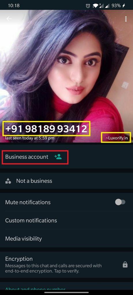 luxorify whatsapp 2
