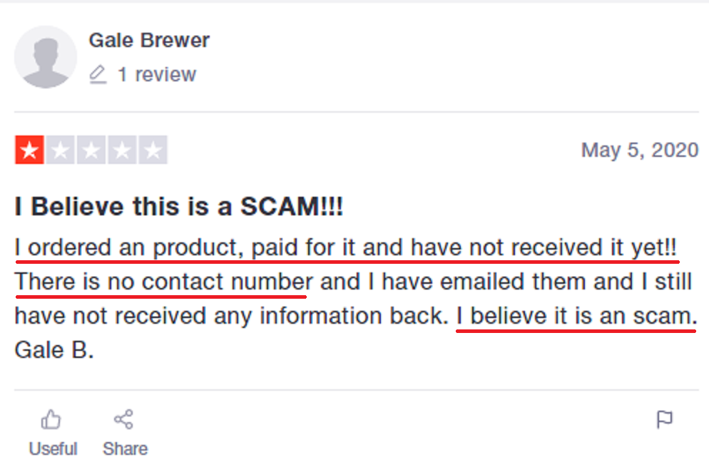chicyoins scam review 4