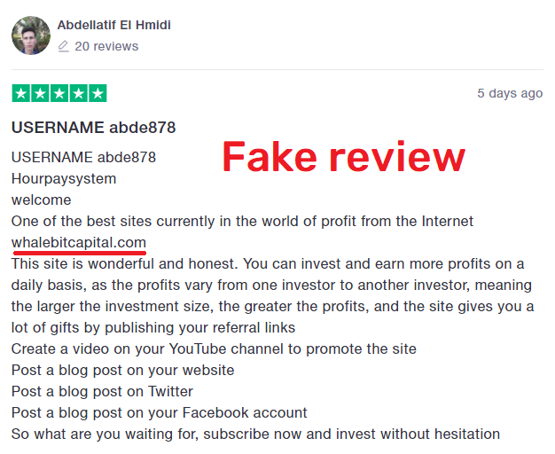 hour pay system scam review 4