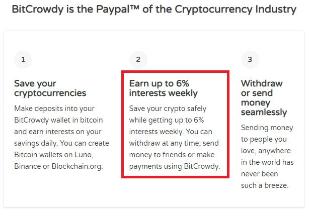 bitcrowdy scam investment plan 1