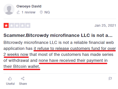 bitcrowdy scam review 2