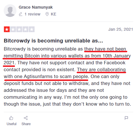 bitcrowdy scam review 4