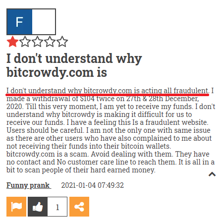 bitcrowdy scam review 6