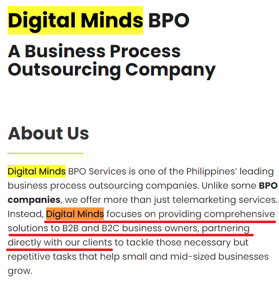 digital minds Philippines about us page