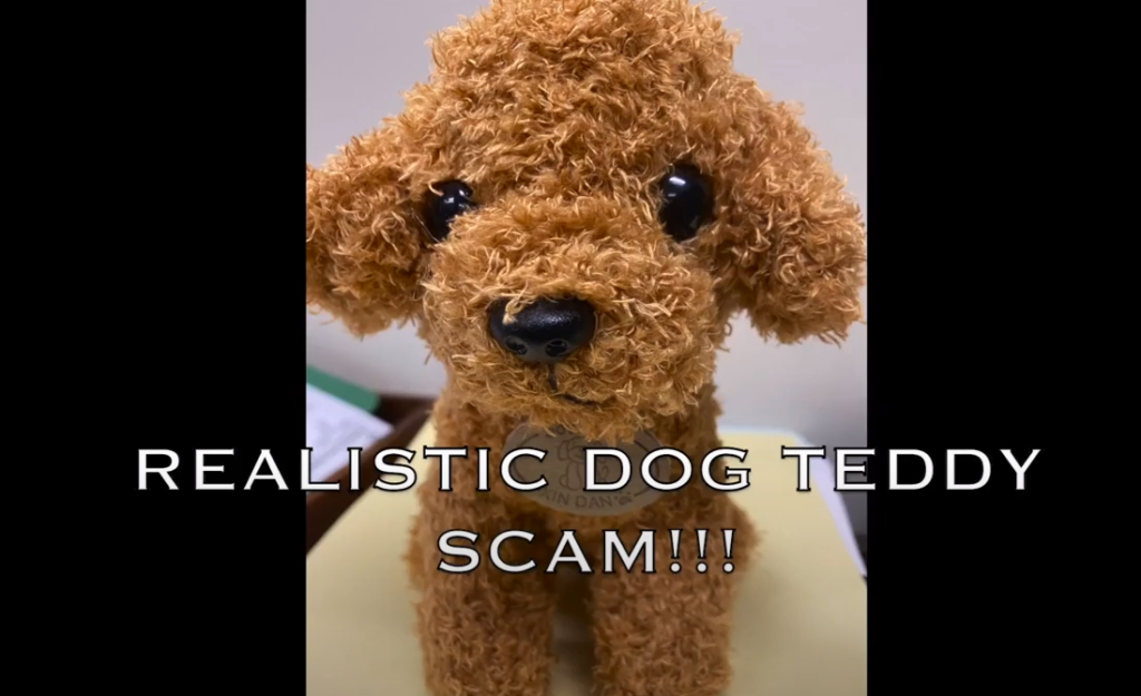 realistic puppy doll scam youtube screenshot