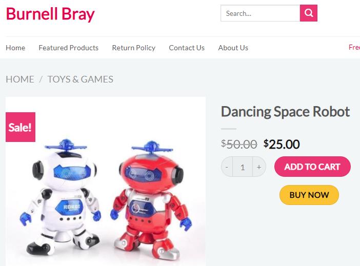 burnellbray scam dancing robot