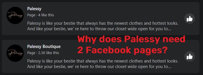 palessy scam facebook pages