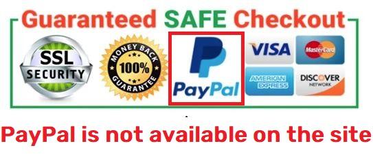 fake paypal checkout